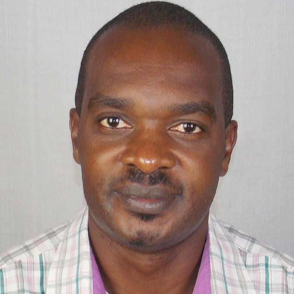 Mike Muchilwa   MC Consulting — Global Team, Africa