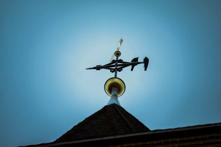 MC Consulting | Pivoting Insights — weather vane, sky